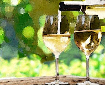 four white wines